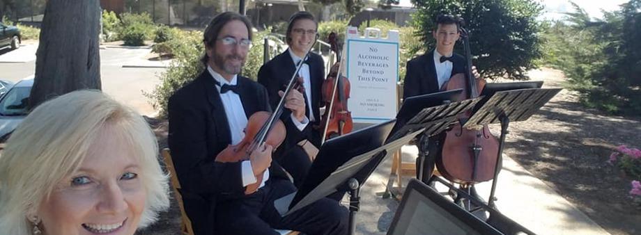 Zene Strings - Classical and Pop String Quartet - String Quartet